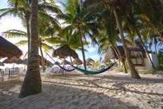 Palmen en hangmatten bij een toevlucht Royalty-vrije Stock Fotografie
