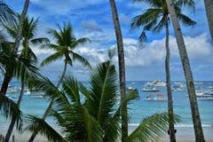 Palmen en het Strand onder een Blauwe Bewolkte Hemel Stock Foto