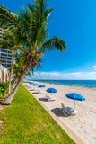 Palmen en parasolrij op het Strand van Miami, Florida, Verenigde Staten stock foto