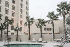 Palmen en Pool in Sneeuw Stock Afbeeldingen