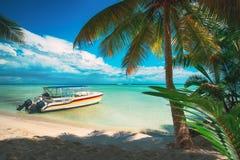 Palmen en snelheidsboot op het tropische strand, Dominicaanse Republiek stock afbeeldingen