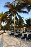 Palmen en stoelen op een tropisch strand stock afbeelding