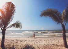 Palmen en strand royalty-vrije stock fotografie