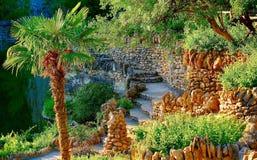 Palmen en Tuin in San Antonio, TX Stock Afbeelding