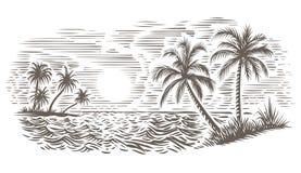 Palmen en van de overzeese de illustratie gravurestijl Geïsoleerde vector, stock foto's