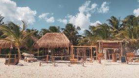 Palmen en wit zandig strand met turkooise oceaan stock foto's