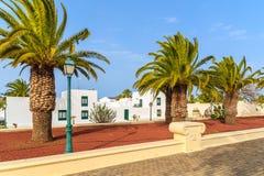 Palmen en witte huizen in Yaiza-stad Stock Foto