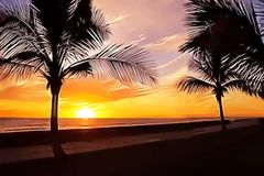 Palmen en zonsondergang vector illustratie