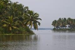 Palmen entlang Kanälen und Seen in den Stauwassern Lizenzfreie Stockfotos