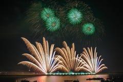 Palmen-Feuerwerke Lizenzfreie Stockfotografie