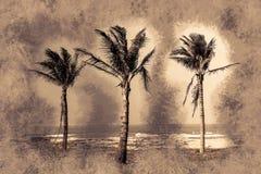 Palmen gegen blauen Himmel Stockfoto
