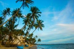 Palmen gegen blauen Himmel Vietnam, Mui Ne, Asien Lizenzfreie Stockfotografie