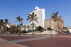 Palmen gegen goldene Meilen-Stadt-Skyline in Durban Stockfoto