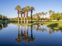Palmen, het golfcursus van de Palmwoestijn Royalty-vrije Stock Afbeeldingen