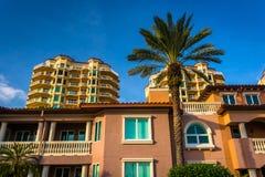 Palmen, huizen en flatgebouw met koopflatstorens in Heilige Petersburg, Florida Royalty-vrije Stock Foto's