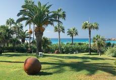 Palmen im Garten Stockfoto