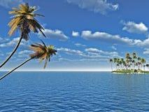 Palmen-Insel Stockfoto
