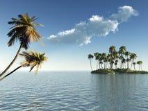Palmen-Insel lizenzfreie abbildung