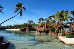 Palmen in lagune Stock Fotografie