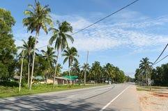 Palmen langs lege weg Stock Afbeeldingen