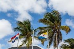 Palmen mit Flaggen von den Niederlanden und von Bonaire stockbild
