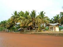 Palmen mit Kabinen durch einen Strand stockfoto