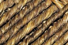 Palmen-Netzkabel-Beschaffenheit stockbild