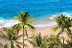 Palmen, oceaangolven en strand, Acapulco, Mexico stock afbeelding