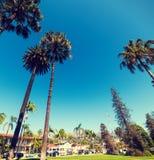 Palmen onder een blauwe hemel in Santa Barbara royalty-vrije stock foto