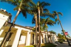 Palmen onder een duidelijke hemel in Santa Barbara stock foto's