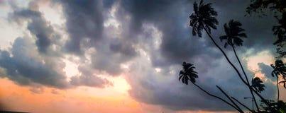 Palmen onder wolken bij zonsondergang Royalty-vrije Stock Foto