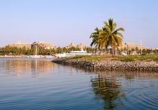 Palmen op baaipijler Royalty-vrije Stock Afbeeldingen