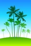 Palmen op blauwe hemelachtergrond Stock Fotografie