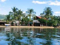 Palmen op Caraïbische kust Stock Fotografie