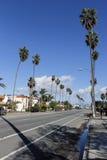 Palmen op de straat in het Strand van Venetië, Californië Stock Foto