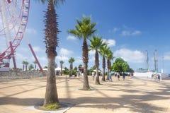 Palmen op de strandboulevard in Batumi Het Reuzenrad en het standbeeld van Ali en Nino op de dijk van Batumi georgië royalty-vrije stock afbeeldingen