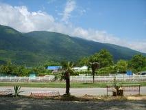 Palmen op een achtergrond van bergen en blauwe hemel Royalty-vrije Stock Foto