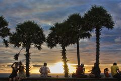 Palmen op een blauwe hemelachtergrond Royalty-vrije Stock Foto's