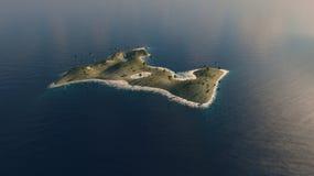 Palmen op een eiland Stock Foto