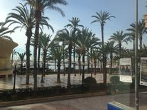 Palmen op het Strand en het hotel in Spanje stock foto's