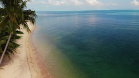 Palmen op strand dichtbij blauwe overzees Hommelmening die van tropische kokospalmen op zandige kust van schone blauwe overzees b
