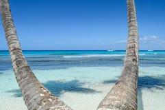 Palmen op Tropisch Strand met Crystal Water en Wit Zand Stock Afbeeldingen