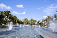 Palmen over blauwe hemel stock afbeelding