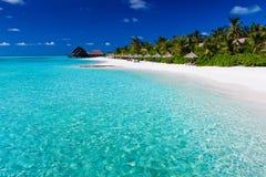 Palmen over lagune en wit zandig strand Royalty-vrije Stock Foto's
