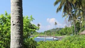 Palmen over tropische lagune met zwart strand op het eiland van Bali, Indonesië Verbazende zonnige mening, zwart zand, golven, ve stock video
