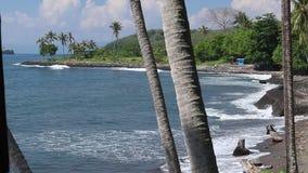 Palmen over tropische lagune met zwart strand op het eiland van Bali, Indonesië Verbazende zonnige mening, zwart zand, golven, ve stock footage