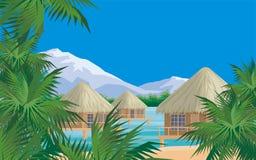 Palmen, overzees en bungalow Stock Foto's