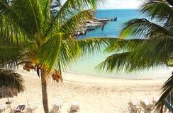 Palmen, overzeese golven en strand, Cancun, Mexico Royalty-vrije Stock Foto's