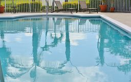 Palmen-Reflexionen im Pool Stockbilder