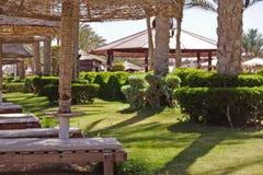 Palmen, Regenschirme und sunbeds auf einem sandigen Strand Küste von Rotem Meer lizenzfreie stockfotos